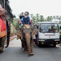 ขี่ช้างก็ดี