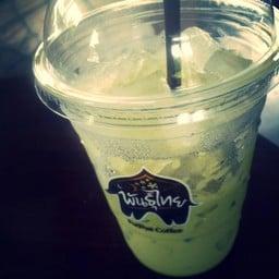 กาแฟพันธุ์ไทย ปากช่อง