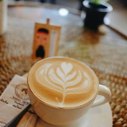 กาแฟปางขอน