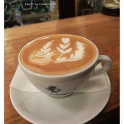 Pacamara Boutique coffee Roasters Rain Hill