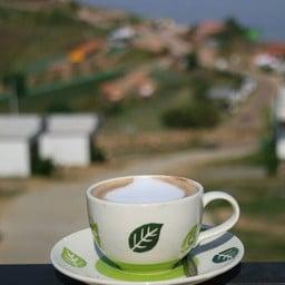 กาแฟสดบ้านกลางหมอก ภูทับเบิก