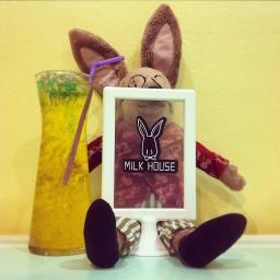Milk House 's Cafe