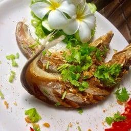 อิ่มอร่อยปลาแม่น้ำ