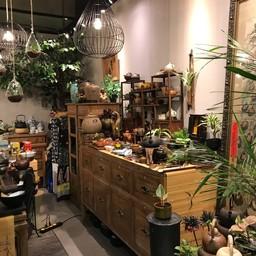 ร้านขายชาจีน Paradise Srinakarindra
