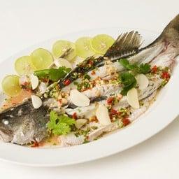 ปลากะพงนึ่งพริกมะนาว