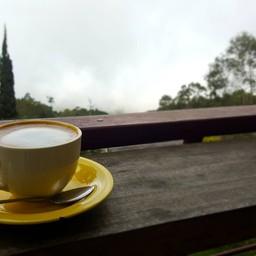 กาแฟสองแสน