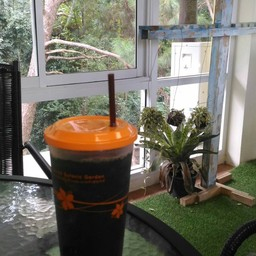 Flying Draco Coffee