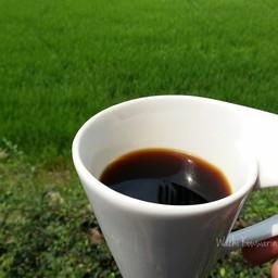 จิบกาแฟ ชมวิวทุ่งนาเพลินๆ