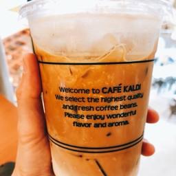 Cafe Kaldi Esplanade