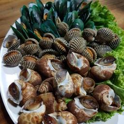 บ่าวน้อยขายหอย CNX