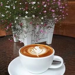 กาแฟร้อน