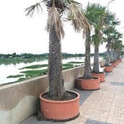 ต้นแม่น้ำเจ้าพระยา