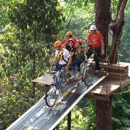 Pongyang Jungle Coaster Zipline Camp&Resort