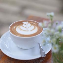 Mao Coffee