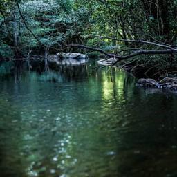 ขอบคุณรูปภาพจาก FB  อุทยานแห่งชาติปางสีดา - Pangsida National Park