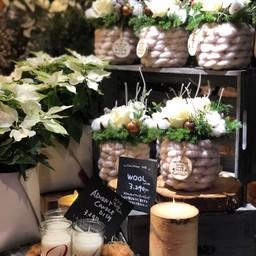 ข้างในร้านมีแต่ดอกไม้กระถางสวยๆทั้งนั้น ใครสายต้นไม้คงตาวาว