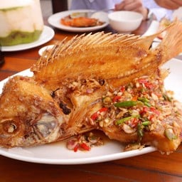 ปลาทับทิมทอดน้ำปลา/ราดพริก