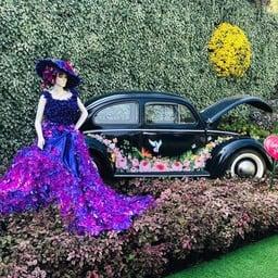 งานเทศกาลเชียงรายดอกไม้งาม สวนตุงและโคมนครเชียงราย