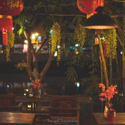 บรรยากาศ Serene Backyard Cafe&Eatery