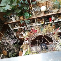 Wallflowers Cafe