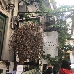 หน้าร้าน Wallflowers Cafe