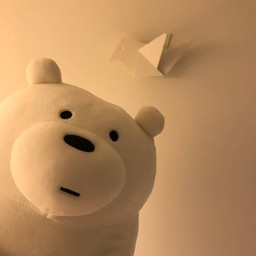 นอกจากน้องหมาแล้ว พี่หมีก็มาด้วย นอนที่นี่ไม่มีเหงา