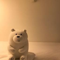 แต่หน้าพี่หมีดูเหงานิดๆ รอคนมานอนด้วย