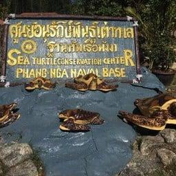 Royal Thai Navy Third Fleet Sea Turtle Nursery