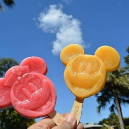 Ice bar Mickey&Minnie