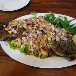 ปลาช่อนตัวบักเอ๊ก ราคา 350. บาท