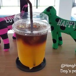 HongHub โฮ่งฮับ Dog's Pool & Hotel