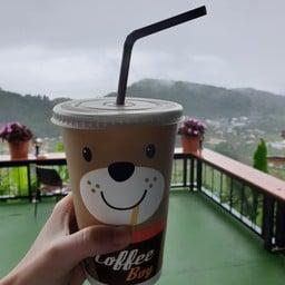 กาแฟ360องศา ม่อนแจ่ม