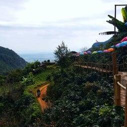 Bamboo Walk ( สะพานไม้ไผ่ไร่ผาฮี้ )