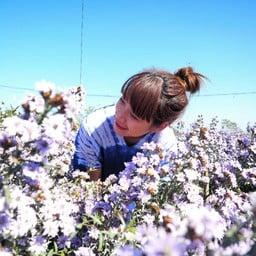 ถ่ายมุมดอกไม้แน่นๆ สวยมากๆจ้า
