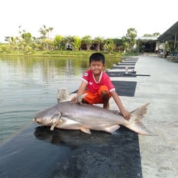 Ks.fishing Park