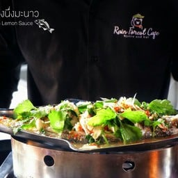 Rain Forest Cafe Bistro&Bar