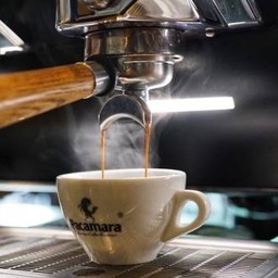 Pacamara Coffee Rain Hill