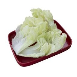 ผักกาดขาว