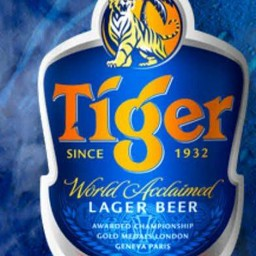 Tiger 320ml