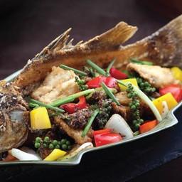 ปลากะพงพริกไทยดำ