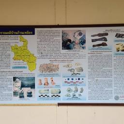 พิพิธภัณฑ์แหล่งโบราณคดีบ้านก้านเหลือง