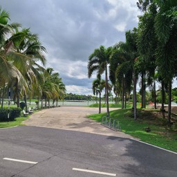 สวนสาธารณะหนองบัว