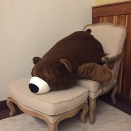 หมีกอดหมอน