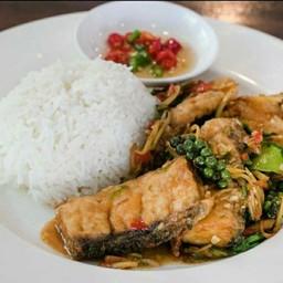 กะเพราปลากะพงราดข้าว