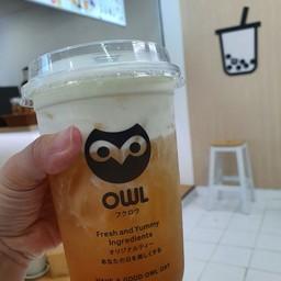 owl cha  ลำปาง (รีเจนท์ ลอดจ์)