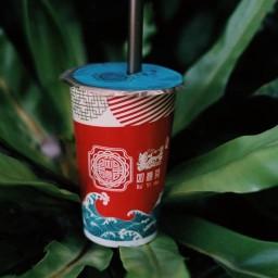 หยูอี่ชา พหลโยธิน8 - Ruyi cha Phahonyothin8 如意茶 拍凤裕庭 พหลโยธิน8