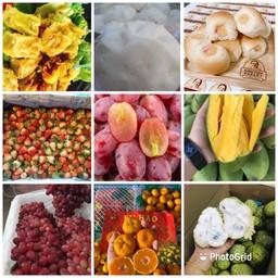 ขนมจีบซาลาเปา-แซนด์วิช-ผลไม้