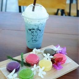 Romsai Cactus & Coffee