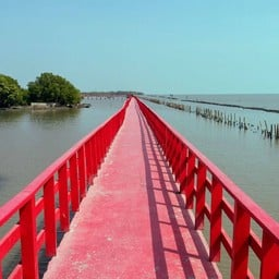 สะพานแดง จุดชมวิวปลาโลมา
