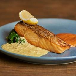 Premium Salmon Trout Fillet